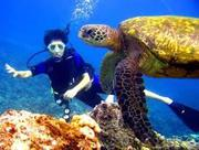 Get Great Discount of Hawaii Scuba Diving Tours package